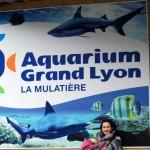 2010-01-29-aquarium (1)-001